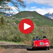Cabrio-Spritztour durch die Apfelblüte