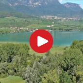 Il biotopo del lago di Caldaro visto dall'alto