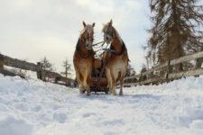 San Genesio in inverno