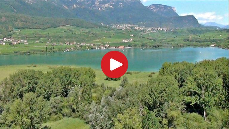 Das Biotop Kalterer See aus der Luft