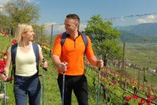Spring fever in Termeno