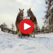 Winter in Jenesien