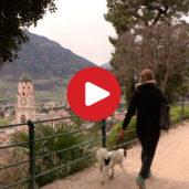 The Tappeinerweg Path in Merano