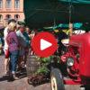 Bauernmarkt in Kaltern