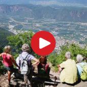 Wandertipp: Urzeitsiedlung Enzbirch