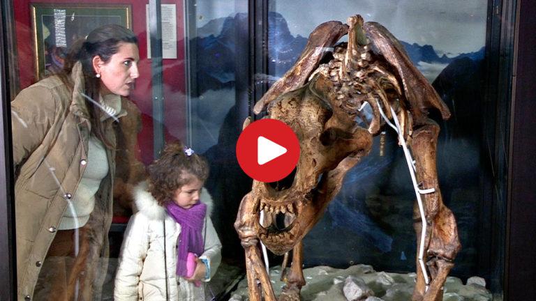 DoloMythos Museum in Innichen