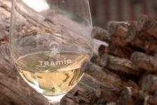 """""""Gewürztraminer"""" Wine Road"""