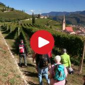 Escursioni autunnali a Termeno