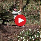 Das Frühlingstal
