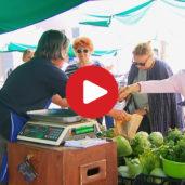 Farmer's market in Bolzano