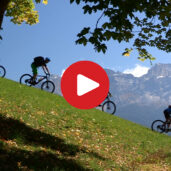 Biking experience in the Val d'Ega