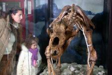 Museum DoloMythos in San Candido