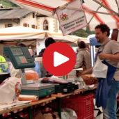 Kuppelwieser Markt im Ultental