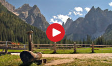 Estate in Alto Adige