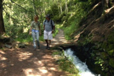 I sentieri delle rogge della Val Venosta