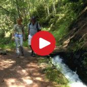 Waalweg paths in Val Venosta