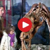 Museo DoloMythos a San Candido