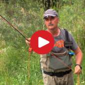 Fly Fishing in South Tyrol