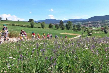 Trentino urlaub in den dolomiten und am gardasee trentino