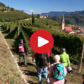 The Wine Hiking Week in Termeno
