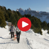 Tobogganing on the Rasciesa High Alp
