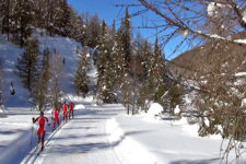 Winter sports in South Tyrol