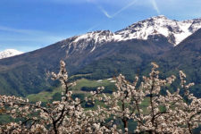Spring in Venosta Valley