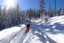 Snowshoe hiking tour: Nova Ponente