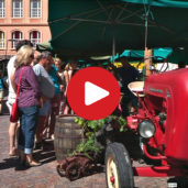 The farmers' market of Caldaro
