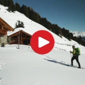 Snowshoe Hiking Tour Malga Tella